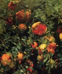 John Singer Sargent, Pomegranates, 1908